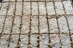 Příprava receptu Bomba koláč s oříškovým sněhem, krok 11