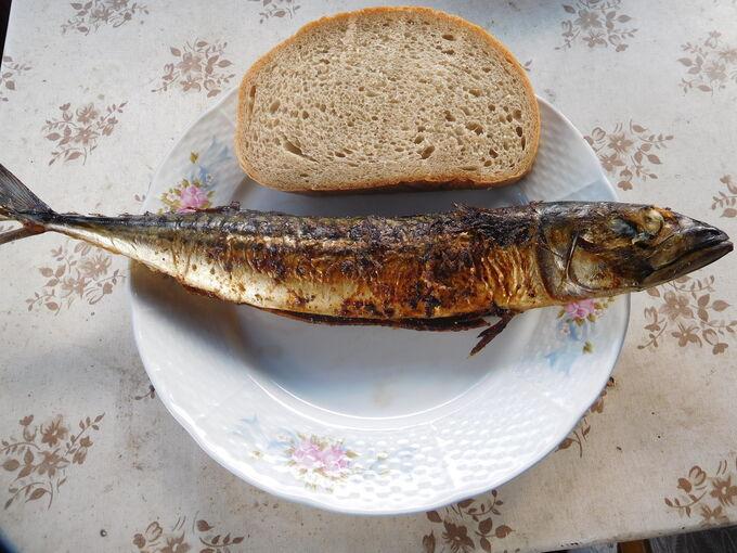Recept Grilovaná makrela