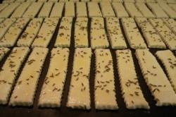Příprava receptu Slané tyčinky ze zakysané smetany, krok 6